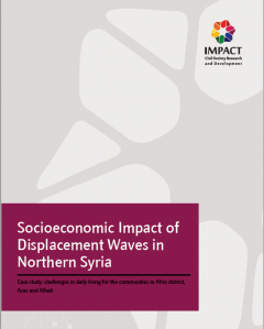 4836_impact-of-displacement-syria-cover.png